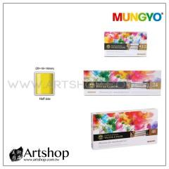 韓國 MUNGYO 專家塊狀水彩 單色
