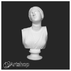訂購商品 半面石膏像 素描用石膏像 素描靜物 尼荷蓓 運費另計350