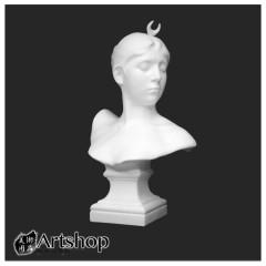 訂購商品 半面石膏像 素描用石膏像 素描靜物 月神 運費另計350